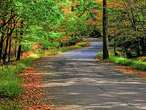 South Mountain Reservation by Valerie Morrison