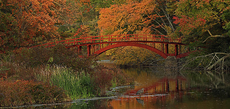 Juergen Roth - South Natick Sargent Footbridge