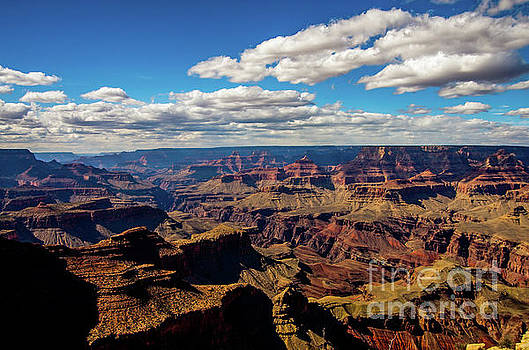 South Rim Vista by Stephen Whalen
