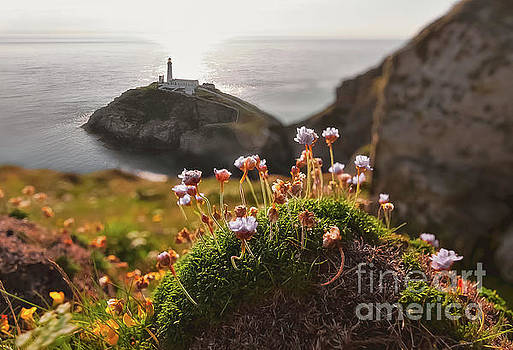 Mariusz Talarek - South Stack Lighthouse