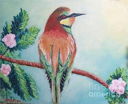 Southern bee-eater by Jean Pierre Bergoeing