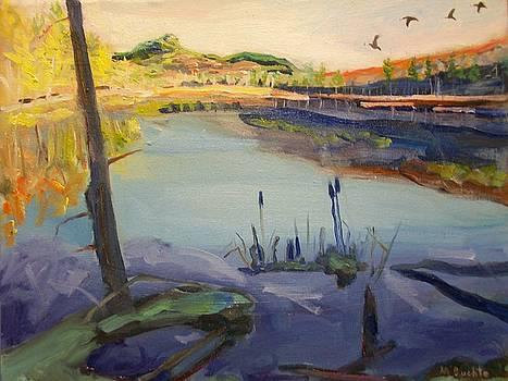Southern Bound by Margaret Buchte