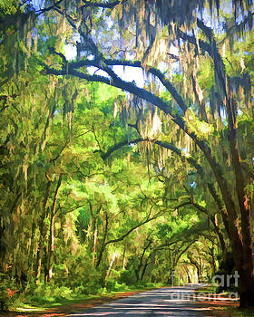 Southern Drive Through Spanish Moss  by Kerri Farley