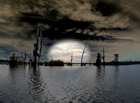 Southern Lake by Rick McKinney