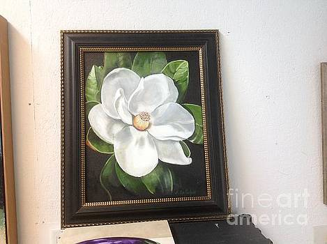 Southern Magnoila by Elaine Callahan