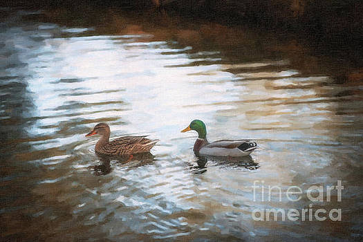 Southern Mallard Ducks by Dale Powell