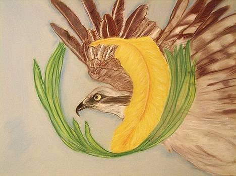 Southern Osprey by Michelle  Thomann-Ramirez