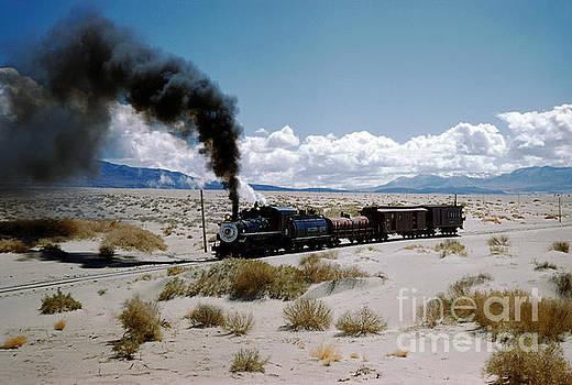 Southern Pacific Steam locomotive 9 Runs in the Owens Valley by Wernher Krutein
