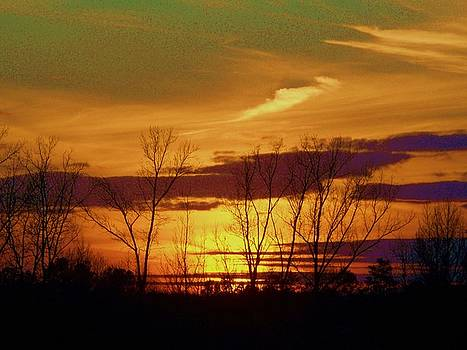 Southern Sunset by Beverly Hammond