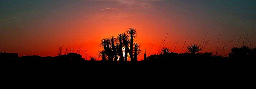 Southern Sunset by Kenneth Krolikowski