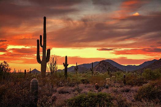 Saija Lehtonen - Southwest Beauty at Sunset