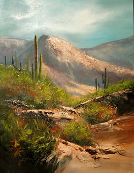 Southwest Beauty by Robert Carver