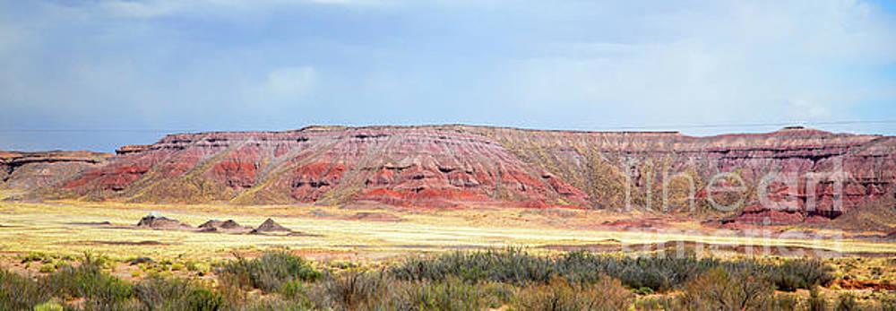 Chuck Kuhn - Southwest Panorama