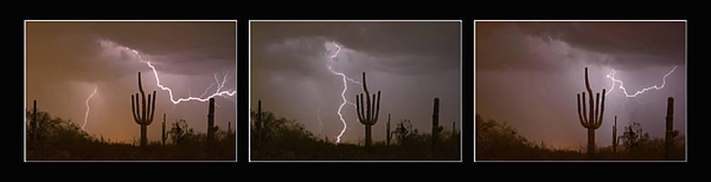 James BO Insogna - Southwest Saguaro Cactus Desert Storm Panorama