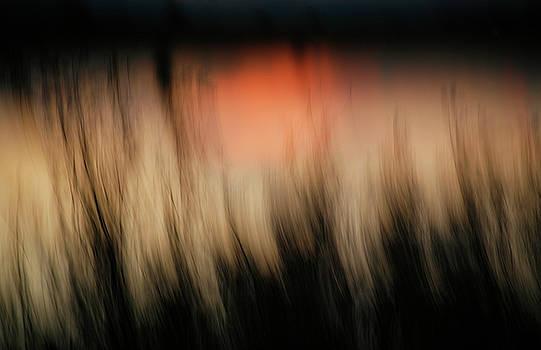 Marilyn Hunt - Southwestern Sunset