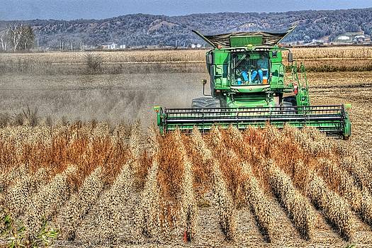 Soybean Harvest Fremont County Iowa by J Laughlin