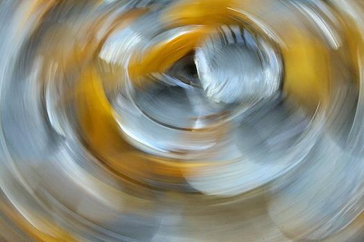 Spa Spin by Paulette Maffucci
