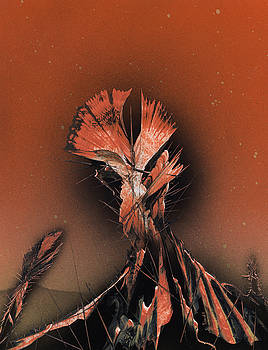 Jason Girard - Space Cacti
