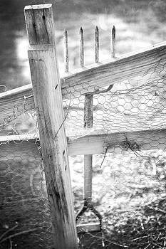 Spading Fork On Chicken Wire Fence in Black and White by YoPedro