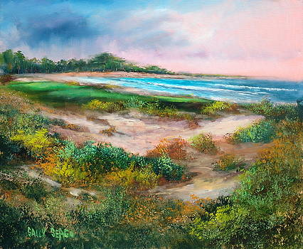Spanish Bay by Sally Seago