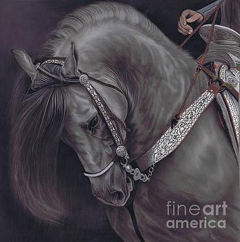 Karie-Ann Cooper - Spanish Horse