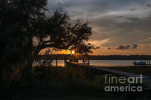 Dale Powell - Spanish Moss Sunset over the Wando River