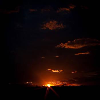 Spark in the Dark by Laura Wiksten