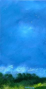 Sparkle Lit by Dave Jones