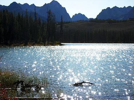 Sparkling Redfish Lake by Sherry Oliver