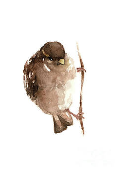 Sparrow Image, Bird, Giclee art print, Brown Watercolor painting by Joanna Szmerdt