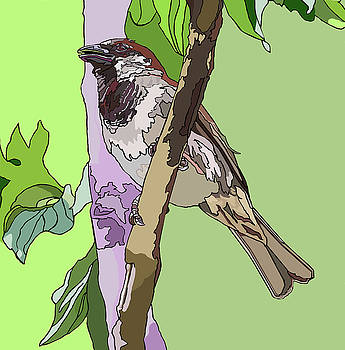 Sparrow in Tree by Jamie Downs
