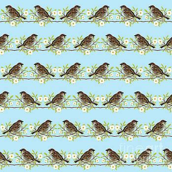 Sparrows by Gaspar Avila