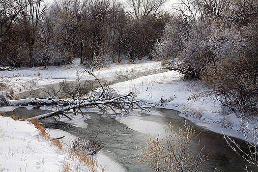Spearfish Creek by Buck Lovell