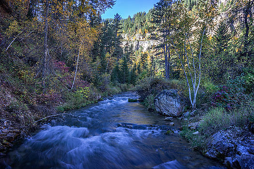 Ray Van Gundy - Spearfish Creek in Autumn