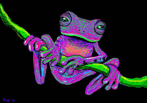Nick Gustafson - Speckled frog on a vine