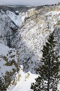 Reimar Gaertner - Spectacular Grand Canyon of the Yellowstone in winter with the f
