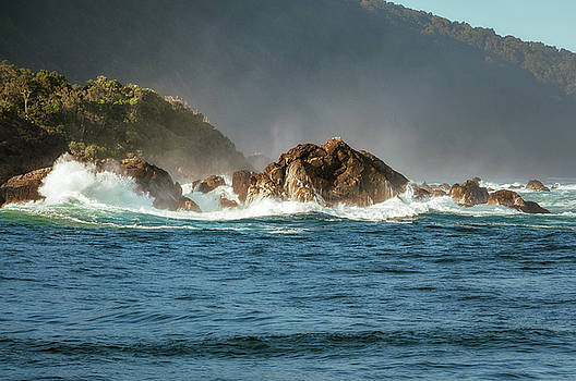 Spectacular Waves crashing on the seashore of Tasman Sea at Milford Sound by Daniela Constantinescu