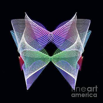 Spectrum Butterfly by Brian Jones
