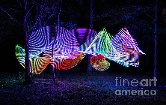 Spectrum Trees by Brian Jones