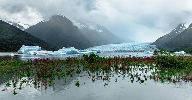Spencer Glacier by Kyle Lavey