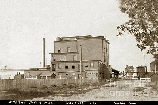 California Views Archives Mr Pat Hathaway Archives - Sperry Flour Mill. Salinas, California  Circa 1908