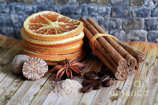 Spices of Life by Tracy Hall