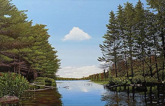 Spider Lake Pond by Kenneth M Kirsch