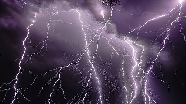 Spider Lightning by Mark Spomer