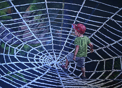 Spider Man by Valerie Patterson