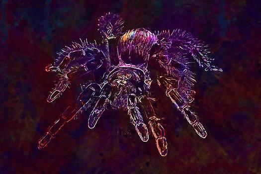 Spider Tarantula Arachnophobia  by PixBreak Art