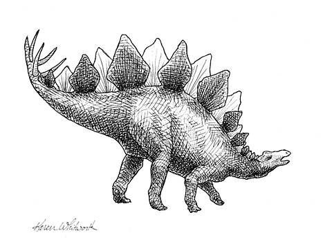 Spike the Stegosaurus - Black and WHite Dinosaur Drawing by Karen Whitworth