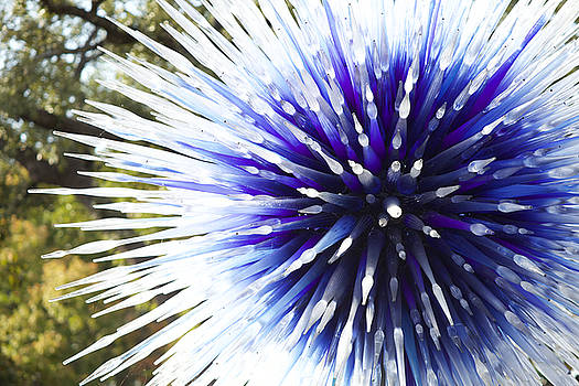 Spiked Ball by Fedil
