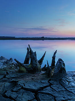 Spikes in blue by Davor Zerjav