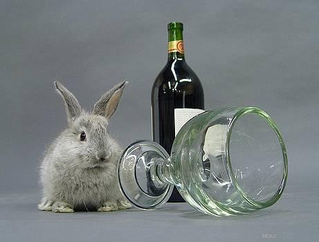 Spill that wine by Alana  Schmitt